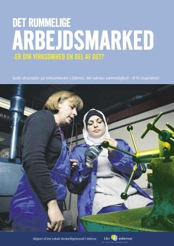 Avis 2_Niras.pdf - Det Lokale Beskæftigelsesråd i Odense