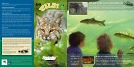 Admission is FREE!! - Kentucky Department of Fish and Wildlife ...