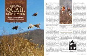 Download - National Bobwhite Conservation Initiative