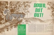 Squirrels remain - Kentucky Department of Fish and Wildlife ...