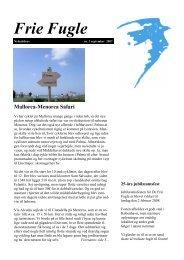 Mallorca-Menorca Safari - Idéværkstedet De Frie Fugle