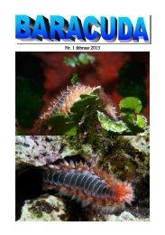 Nr. 1 februar 2013 - Baracuda Dykkerklub