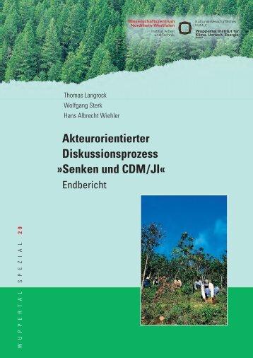 WS29.pdf - Wuppertal Institut für Klima, Umwelt, Energie