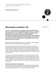Menneskets evolution i 3D - Århus Statsgymnasium