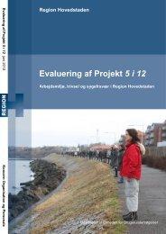 Evaluering af Projekt 5 i 12 - Enheden for Brugerundersøgelser