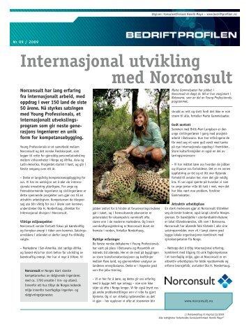Internasjonal utvikling med Norconsult - Bedriftprofilen