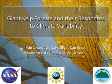 Giant Kelp Forests and their Responses to Climate Variability