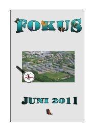 Juni 2011 - Langå Skole - Fejl.