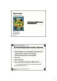 Erkendelsesteoretisk skema - Reservatet - ledelse og erkendelse