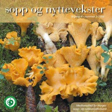 Nr 3 - 2008 i sin helhet - Norges sopp- og nyttevekstforbund