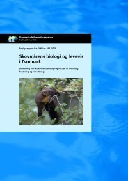 Skovmårens biologi og levevis i Danmark