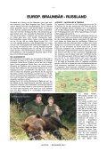 BRAUNBÄR 2012 - Page 4