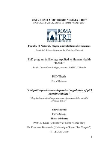 phd thesis in english language