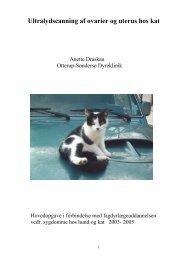2006-01 Anette Draskau.pdf