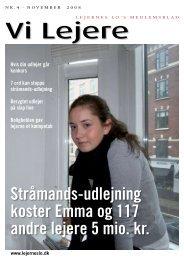 Stråmands-udlejning koster Emma og 117 andre ... - Lejernes LO