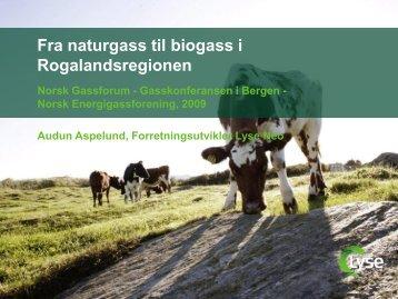 Fra naturgass til biogass - Norsk Gassforum