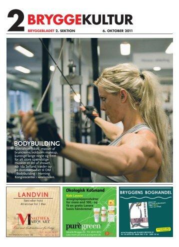 Nr. 15-2011 - Bryggebladet