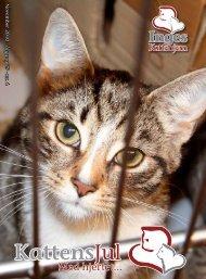 KattensJul - Inges Kattehjem