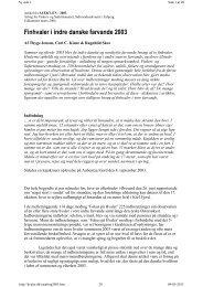 Finhvaler i indre danske farvande 2003 - Fokus på Hvaler i Danmark