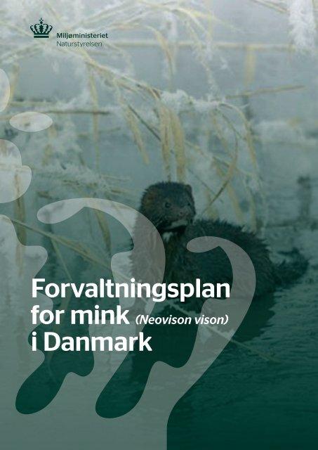 Forvaltningsplan for mink - Naturstyrelsen