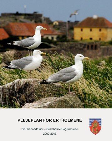 Plejeplan for de ubeboede øer 2009-2015.pdf