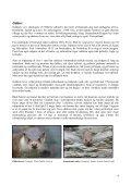 Bilag - Naturstyrelsen - Page 4