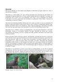 Bilag - Naturstyrelsen - Page 6