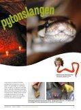 Bilag: Polarforskning - Nysgjerrigper - Page 5