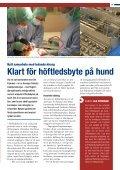 Journalen 2012 - Regiondjursjukhuset - Helsingborg - Page 5