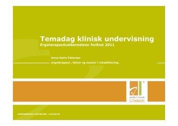 Temadag klinisk undervisning Ergoterapeutuddannelsen foråret 2011