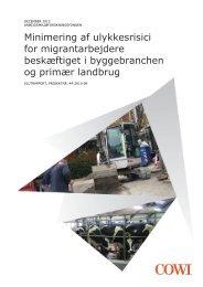 Minimering af ulykkesrisici for migrantarbejdere ... - Arbejdstilsynet
