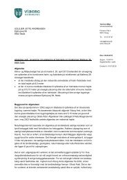 Læs afgørelsen (pdf) - Viborg Kommune