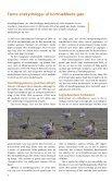 Vildtinformation 2003 - Naturstyrelsen - Page 4