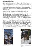 Download en lille vejledning - Håbets Allé - Page 7