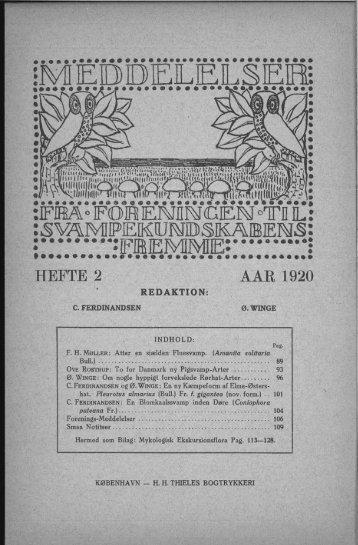 Hefte 2 1920