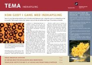 TEMA 2010: Indkapsling (669 KB) - Teknologisk Institut