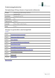 Undervisningsbeskrivelse - Herning HF og VUC