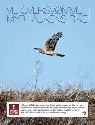les mer i Natur & Miljø - Norges Naturvernforbund