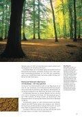 Biomasse - Biogas - Lottes-roland.de - Seite 4