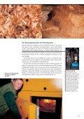 Biomasse - Biogas - Lottes-roland.de - Seite 6