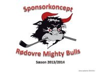 Sponsorkoncept - Rødovre Mighty Bulls