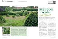 BUKSBOM -populær evergreen