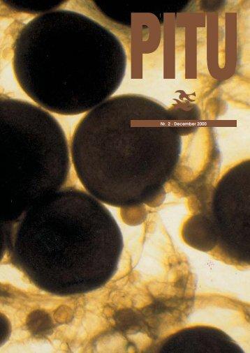 NY rettet d.13/11 Pitu 2/2000 - Grønlands Naturinstitut