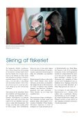 NY rettet d.13/11 Pitu 2/2000 - Grønlands Naturinstitut - Page 5