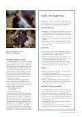 På jagt efter pattedyrenes konge - Naturstyrelsen - Page 4