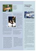 Tag med ud og fisk - Page 4