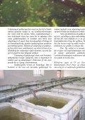 April 2003 - Lystfiskeriforeningen - Page 3