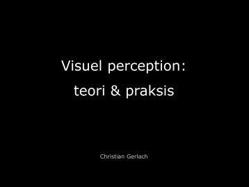 Visuel perception: teori & praksis