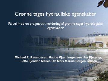 Grønne tages hydrauliske egenskaber (1.2 MB) - Vand i Byer