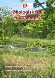 Økologisk fisk fra Danmark - Fugl og Fisk